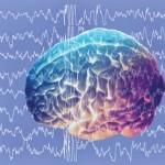 I neurologi Gandolfini e Gigli: «stati vegetativi non sono irreversibili, si a terapia»