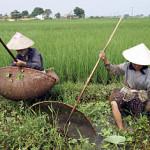 Sacerdote vietnamita: la mia missione al servizio dei poveri e degli atei