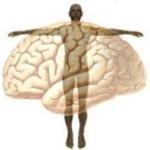 Coscienza e neuro-libertà: il contributo di Tommaso d'Aquino (I° parte)