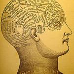 La psicologia evolutiva e le storielle sulla mente umana