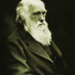 È realmente possibile falsificare o corroborare il darwinismo?