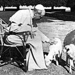 Pio XII nascose gli ebrei nella sua residenza