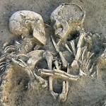 La fede nell'aldilà del Neanderthal e la prova del consenso unanime