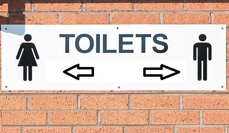 """I maschi usino il bagno dei maschi"""": la legge che scandalizza la ..."""