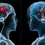 Gli studi di genere smentiti dalla scienza: si nasce e si rimane uomini o donne
