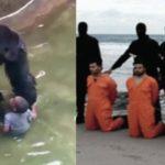 Se il gorilla abbattuto è più mediatico dei cristiani sgozzati dall'Isis