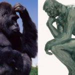 L'ontologica differenza tra l'uomo e l'animale, ne parla il filosofo Sergio Givone