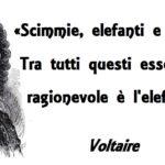 Voltaire, il tollerante razzista e antisemita