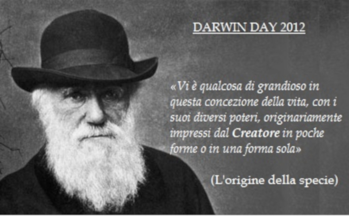 Darwin incontri regole