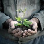 L'ecologia e l'ambientalismo dipendono da una visione cristiana del mondo