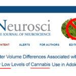 Un solo spinello danneggia il cervello, lo studio gela i pro-cannabis
