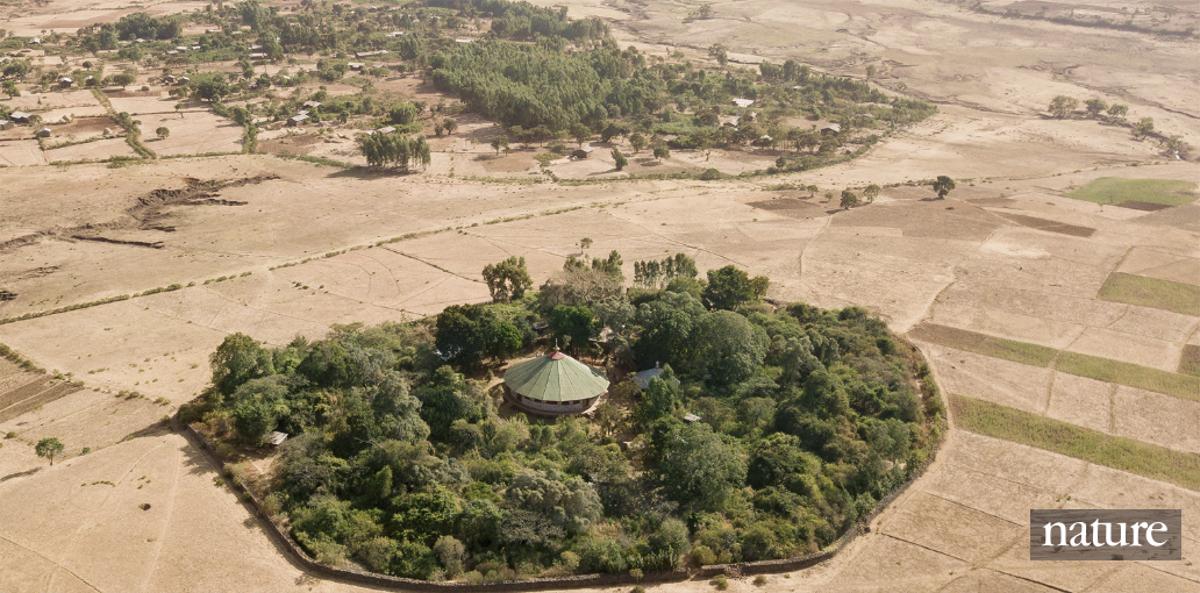 etiopia biodiversità