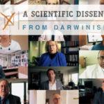 1000 scienziati vs Darwin: selezione naturale non spiega complessità della vita